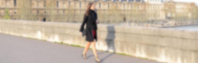 Les Flâneries Parisiennes